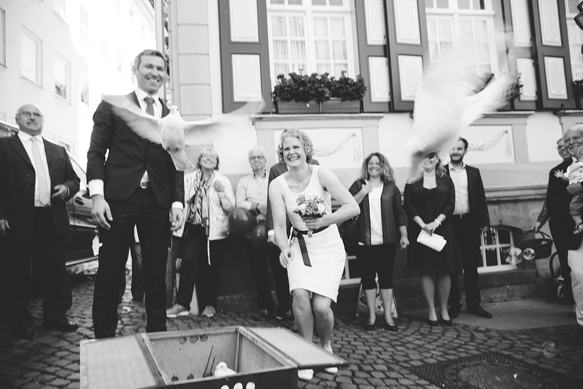 Hochzeit Tauben 001